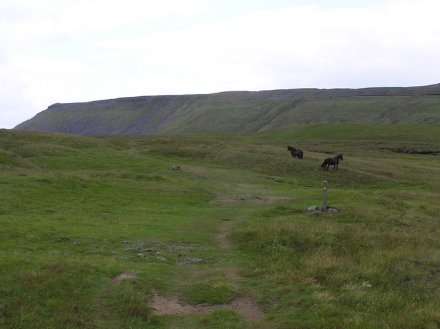 Pennine Way : High Cup Plain
