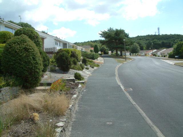 St. Catherine's Hill, Dorset