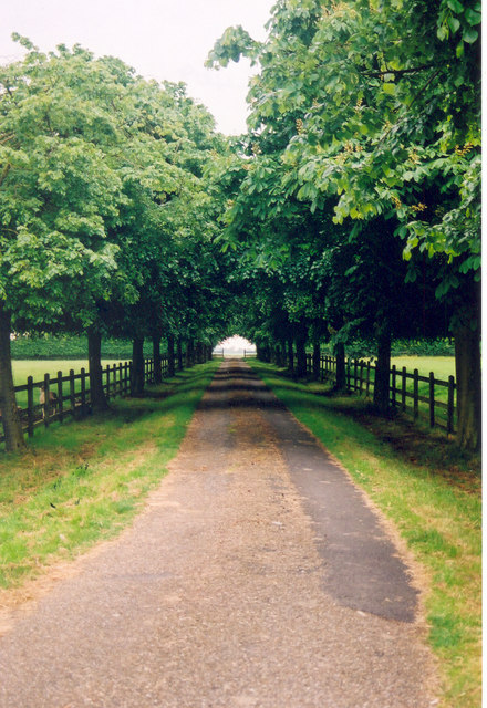 Driveway to and from Tannington Hall, Nr. Framlingham, Suffolk
