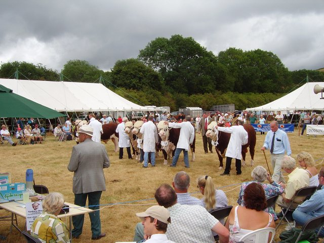 National Hereford Show