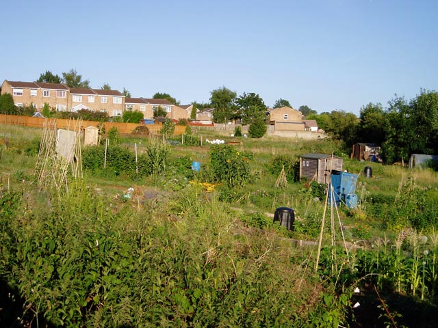 Bisley Old Road Allotments, Stroud