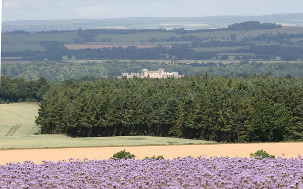 Floors Castle from the Grahamslaw Road
