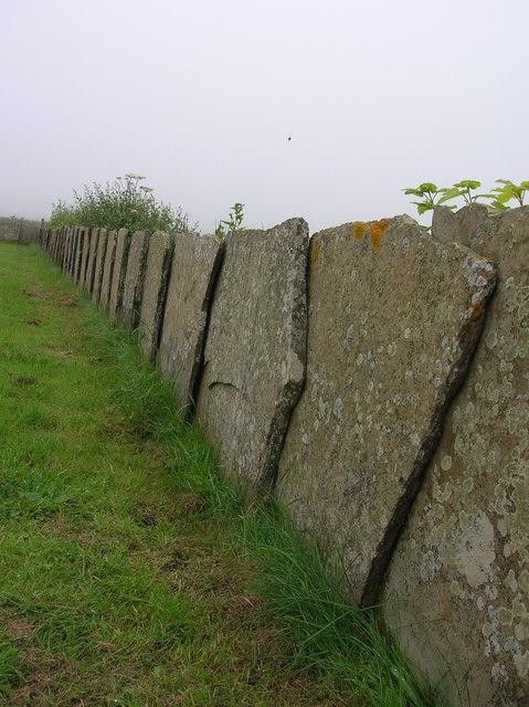 Caithness Flag 'fence'