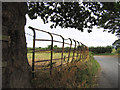 SJ4970 : Cheshire railings by Alan Godfree