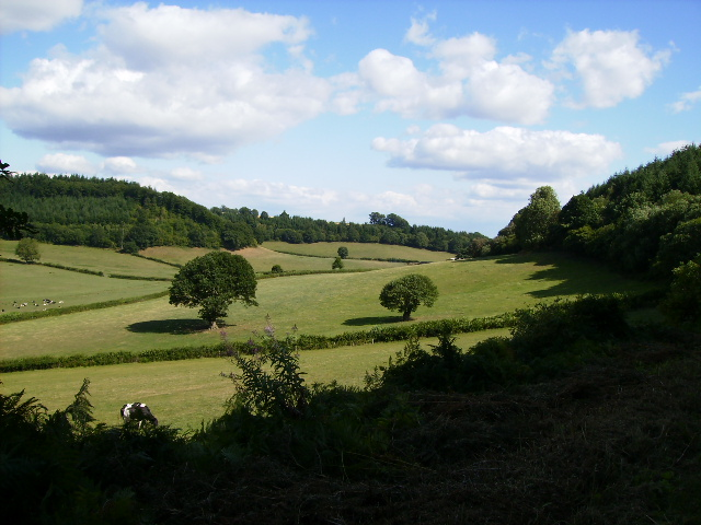 One of the valleys near Aymestrey seen from the Mortimer Trail at Hillhead
