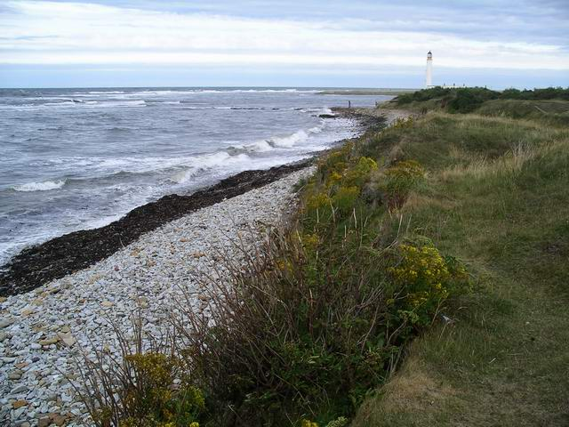 Shoreline between White Sands and Barns Ness