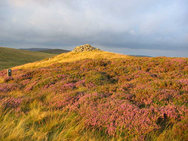 Gold and purple: the Careg-y-Caws cairn