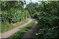 SO4109 : Farm Track by Mike Hallett