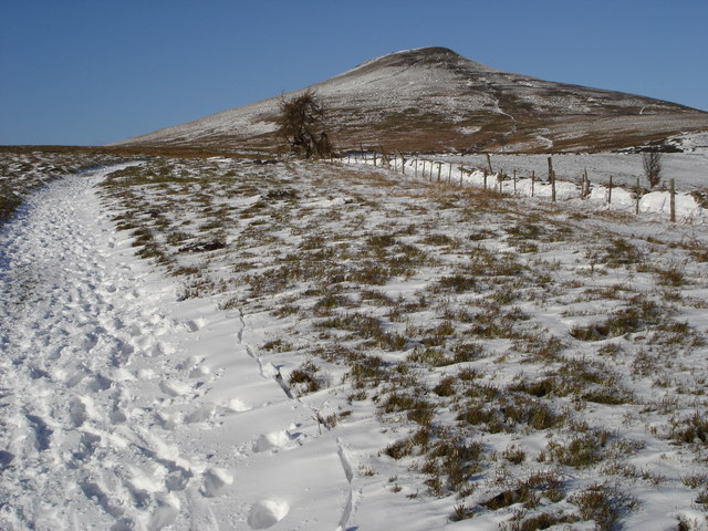 The southern slopes of Sugar Loaf