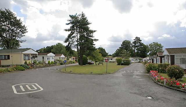 Caravan Park Hampshire Dogs Pool Woods