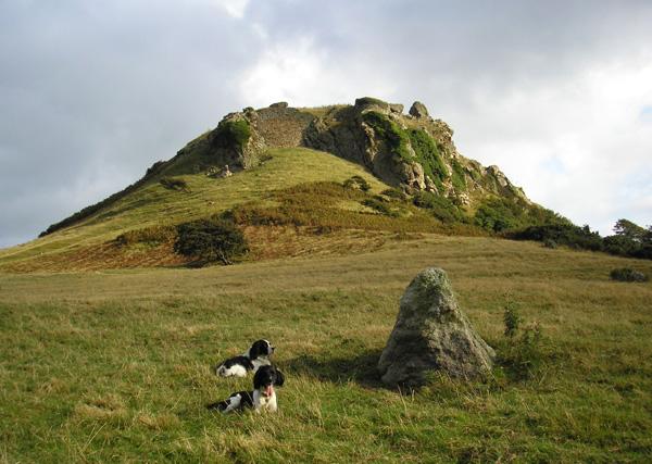 Castell Deganwy Castle