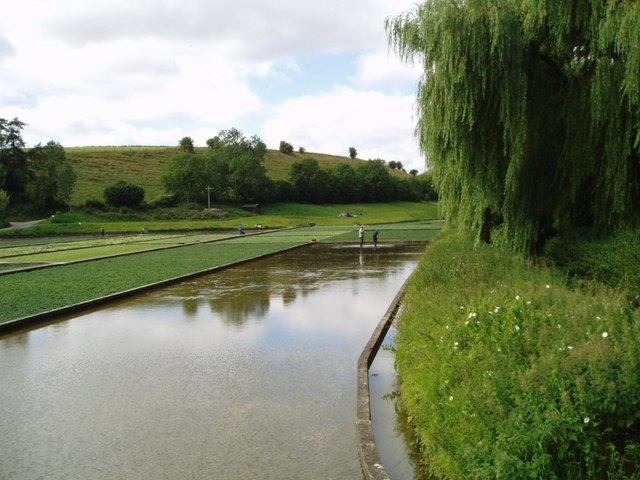 Water Cress beds at Broad Chalke