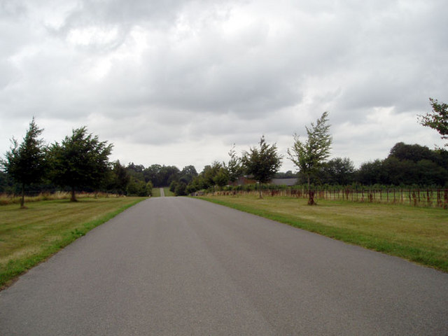 Drive up to Larmer tree Gardens