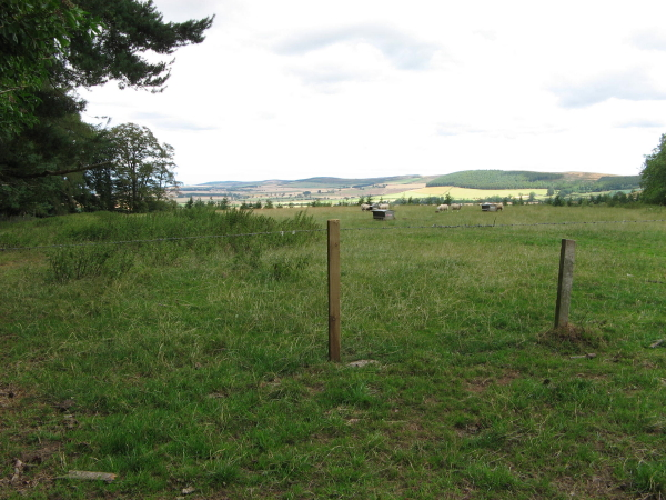 Sheep Pens, Chillingham Estate