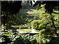 SW7727 : Glendurgan Garden, The Maze by Neil Kennedy