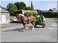 SX1073 : Blisland, Horse and Riders. by Neil Kennedy