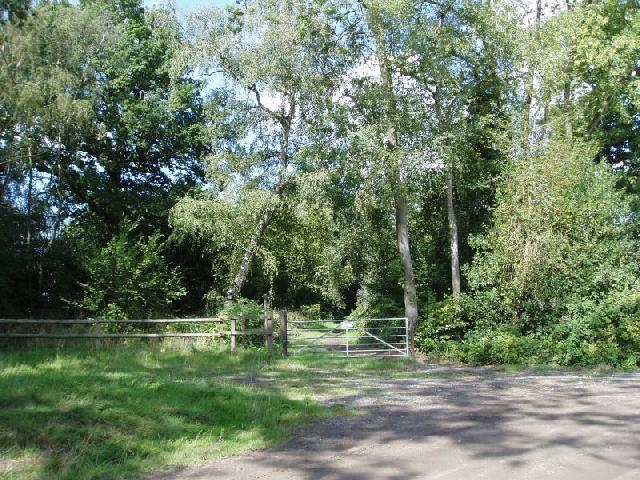 Bridleway near Hophurst Farm