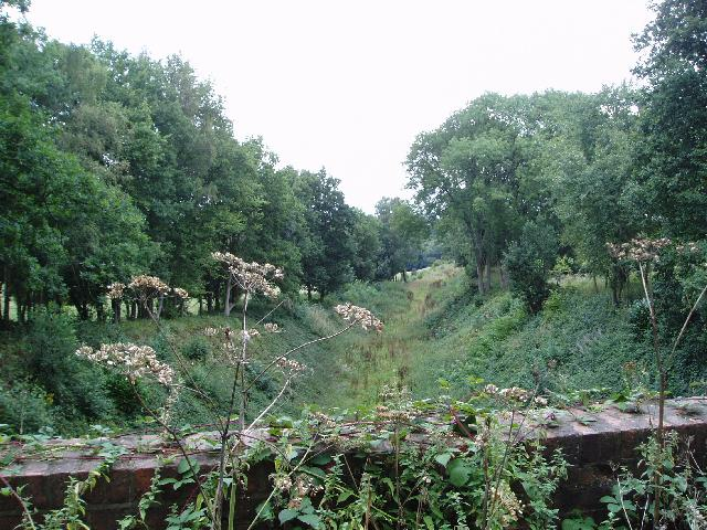 Railway cutting near East Grinstead