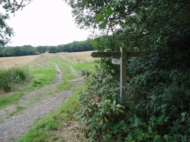 Sussex Border Path near Tilkhurst Farm