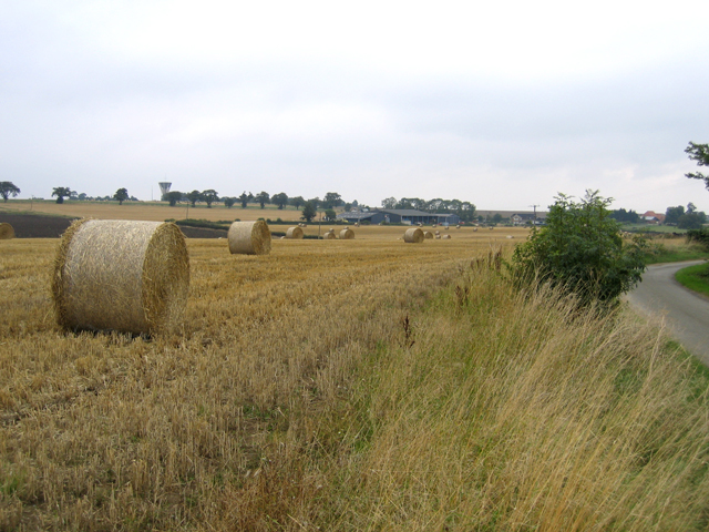 Bales of wheat straw, Laughton, Lincs