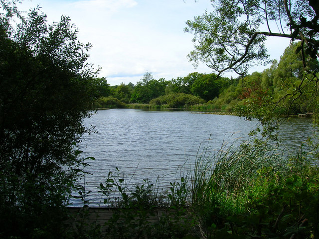 Brickkiln ponds simon carey cc by sa 2 0 geograph for Private fishing ponds near me