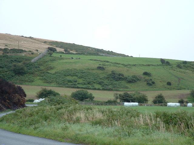 Hillside nr Gwynus