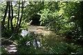 SW9350 : The River Fal by Tony Atkin