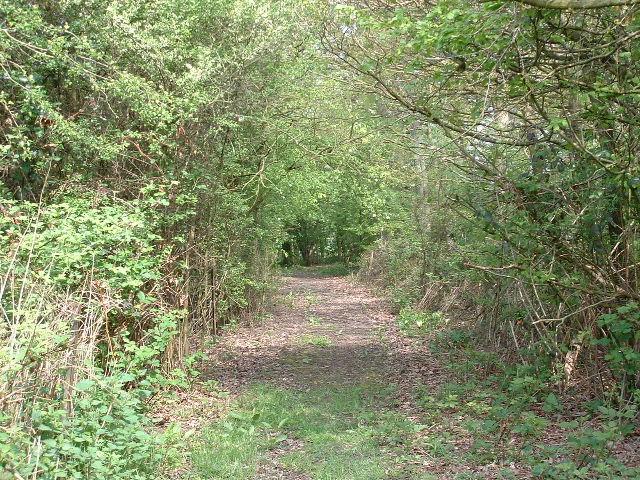 Track to Pinkhurst