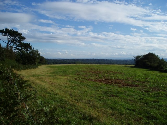View south from Balcombe Lane towards the Downs
