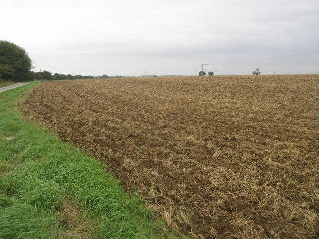 Fresh Ploughing
