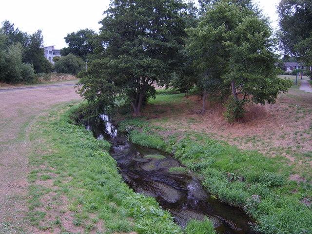Hatchford Brook