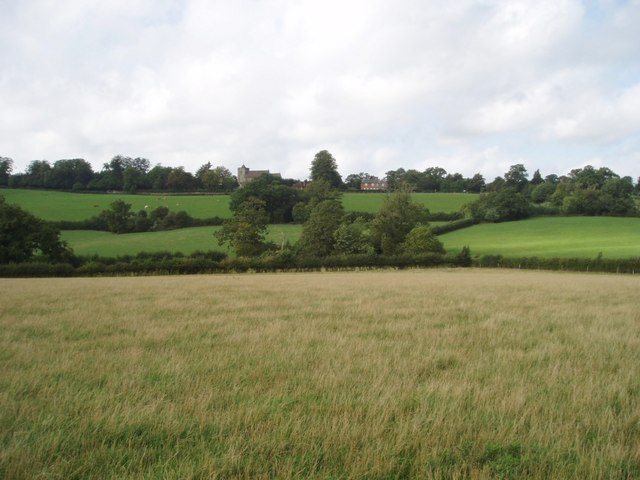 Field near Withypitts Farm