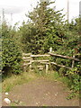 SP8009 : Stile near Bishopstone by David Hawgood