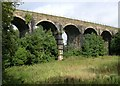 NS8058 : Cleland Viaduct by Chris Upson