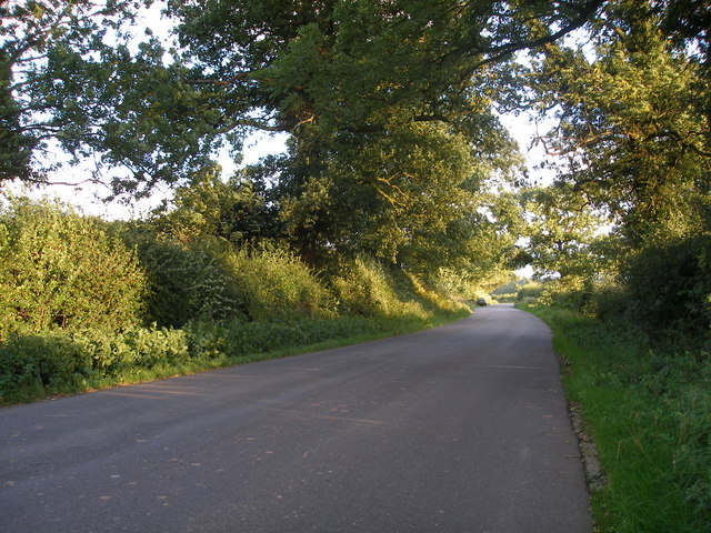 The Lane at Wall Hill, near Corley