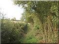 SP8602 : Hedged footpath, Hampden Bottom by David Hawgood