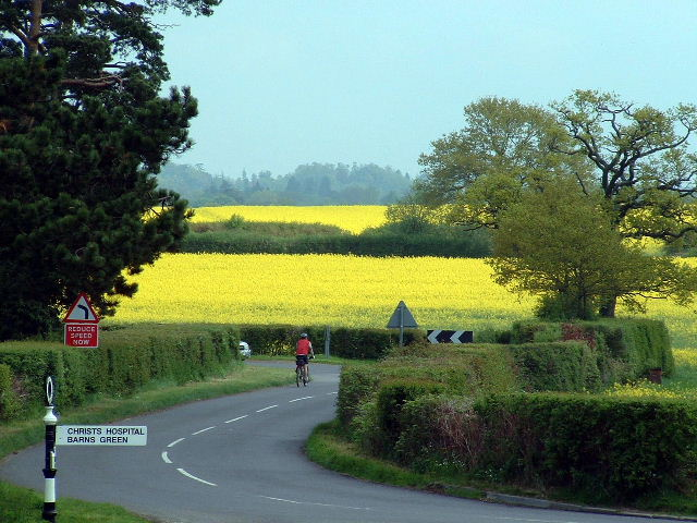 Rape near Fulfords