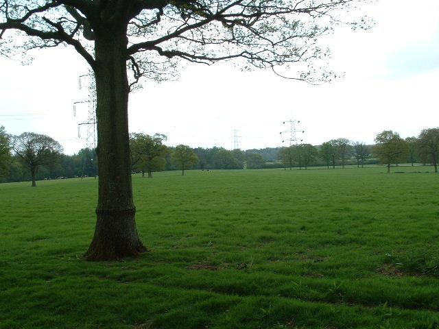 Pylons near Trawlers Farm