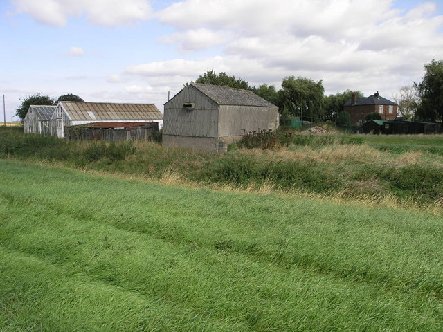 Greenhouses and Shed