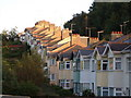 SX9165 : Houses on Westhill Road, Torquay by Derek Harper