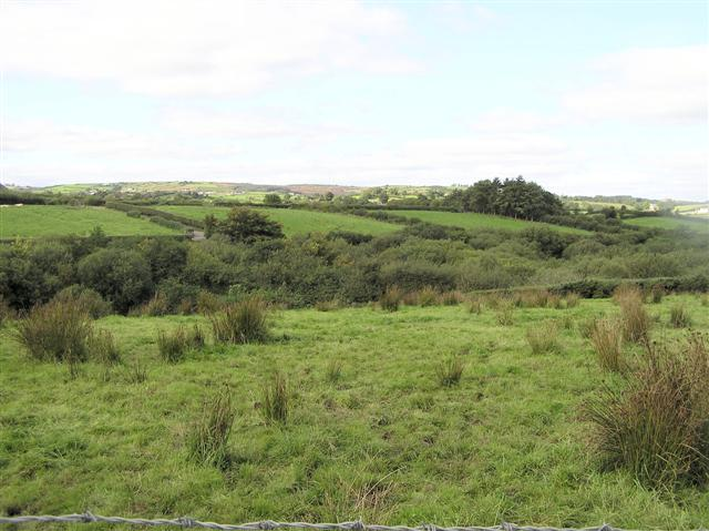 Clonavaddy Townland