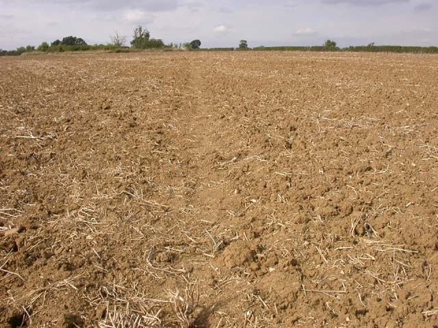 Footpath through Ploughed Field
