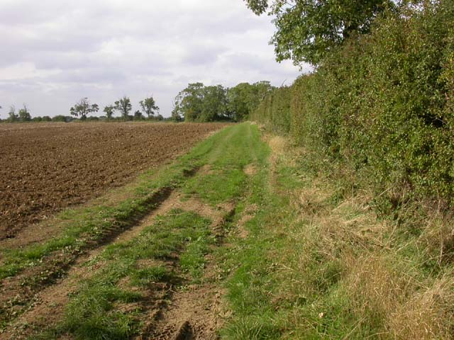 Headland Footpath through a Ploughed Field