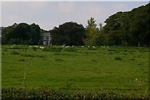 SE9048 : Looking North West Near Wold House Farm by Charles Rispin