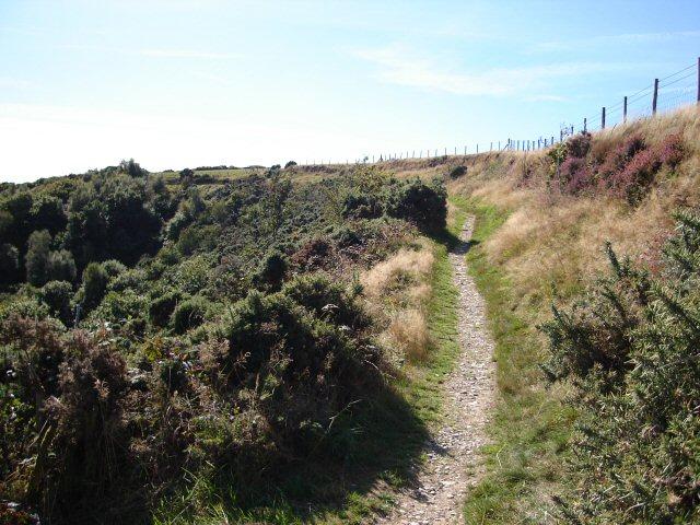 The Tarka Trail/Two Moors Way