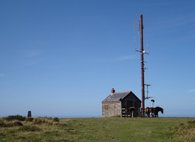 Butter Hill TV Relay Station,Trig pillar and Exmoor Ponies