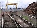 NS7461 : Eurocentral Rail Terminal by Chris Upson