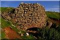 NY6433 : Lime Kiln by Charles Rispin