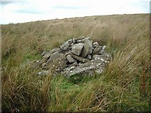 NS5930 : Small cairn on the SE slopes of Wedder Hill by Gordon Brown