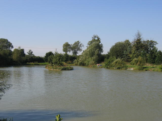 Higham Lane fishing lakes